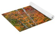 Adirondack Birches In Autumn Yoga Mat