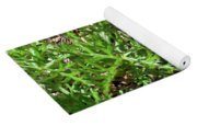 An Oddity Of Nature Yoga Mat