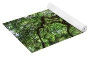 Angel Oak Yoga Mat