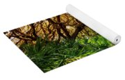 Angel Oaks In Sunshine Yoga Mat
