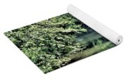 Antietam Creek Yoga Mat