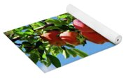 Apples On A Branch Yoga Mat