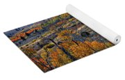Aspen Cascades In The Sierra Yoga Mat