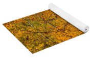 Aspen Trees With Autumn Leaves  Yoga Mat
