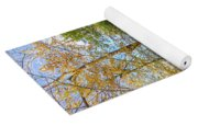 Autumn Color Reflections Yoga Mat