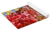 Autumn Trees Red Yellow Fall Tree Blue Sky Landsape Yoga Mat