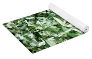 Bamboo Forest In South Carolina Yoga Mat