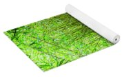 Bamboo Forest Trail Yoga Mat