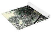 Bark Up The Tall Pine Tree Abstract In Felicina  Louisiana Yoga Mat
