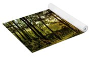 Beautiful Forest At Sunrise Yoga Mat