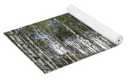 Birch Forest Yoga Mat