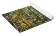 Birches In Fall Forest Yoga Mat