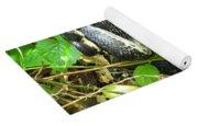Black Rat Snake Yoga Mat