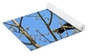 Blue Jay Mobbing A Crow Yoga Mat