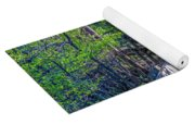 Boardwalk Going Into The Woods Yoga Mat