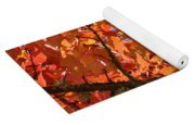 Bright Colorful Autumn Tree Leaves Art Prints Baslee Troutman Yoga Mat