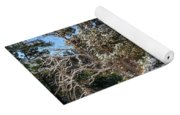 Bryce Canyon Snowfall Yoga Mat