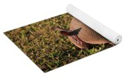 Busy Armadillo Yoga Mat