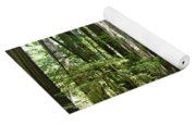 California Redwood Trees Forest Art Yoga Mat