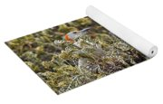 Camouflaged Red-bellied Woodpecker Yoga Mat