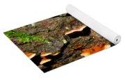 Carolina Mantle Slug Yoga Mat