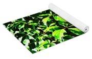 Concrete Green Yoga Mat