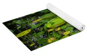 Conservatory Waterlilies Yoga Mat