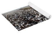 Cotton Field Yoga Mat