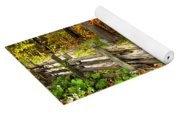 Country Road In Autumn Forest Yoga Mat