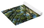 Crystal Lake Il Pine Grove And Sky Yoga Mat