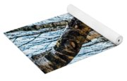 Curved Birch Tree Yoga Mat