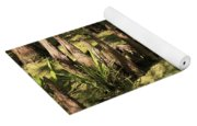 Cypress Knees In Green Swamp Yoga Mat