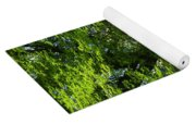 Daffodils And Narcissus Under Tree Yoga Mat