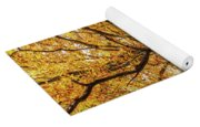 Deciduous Forest In The Autumn Yoga Mat