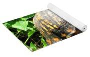 Eastern Box Turtle Yoga Mat