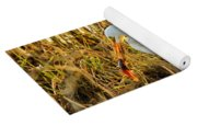 Egret Fishing In Sunset At Forsythe National Wildlife Refuge Yoga Mat