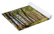 Eucalyptus Tree Tunnel - Kauai Hawaii Yoga Mat