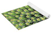 Euphorbia Yoga Mat
