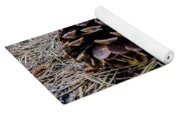 Evergreen Pinecones Yoga Mat