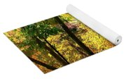 Fall At Lincoln Lake	 Yoga Mat