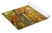 Fall Foliage On The Hike Up Mount Monadnock New Hampshire Yoga Mat
