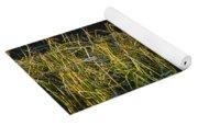 Fall Grasses - Snake River Yoga Mat