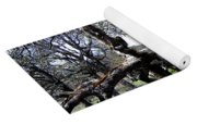 Fallen Mighty Oak Yoga Mat