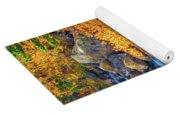 Fall's Rush To South Lake Yoga Mat