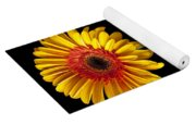 Fancy Daisy In Stripped Vase  Yoga Mat