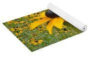 Field Of Coneflowers Yoga Mat