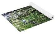 Filtered Forest Sunlight In Oregon Yoga Mat