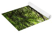 Floral Confetti On The Trail Yoga Mat