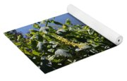 Flowers By The Pond Yoga Mat