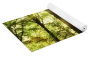 Forest Rays Yoga Mat